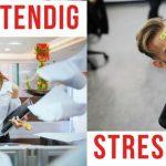 Stressbehendig