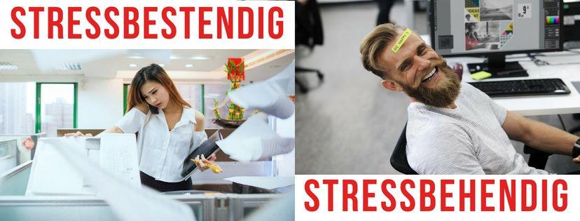 Stressbestendig of liever Stressbehendig?