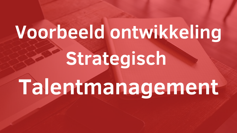 Voorbeeld Strategisch Talentmanagement